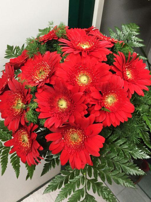 Bouquet-Gerbere_0553